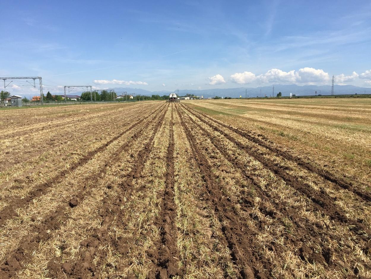 Pôdy obrábané s pásovou technológiou-14