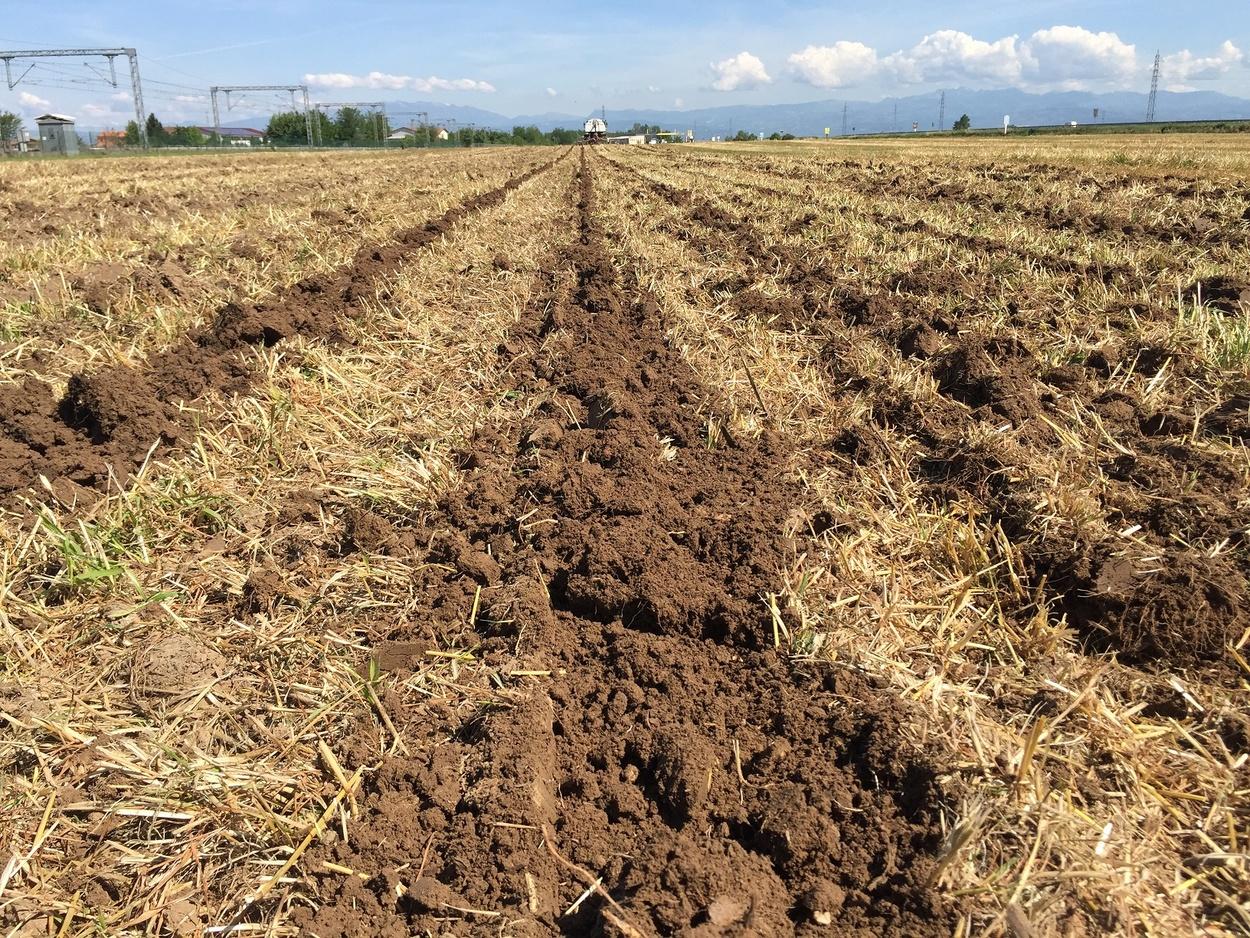 Pôdy obrábané s pásovou technológiou-15